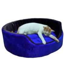 Slatter s Be Royal Multi-color Cat/Dog Small Bed