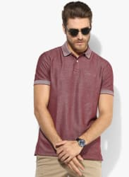 Maroon Solid Regular Fit Polo T-Shirt