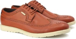 U.S. Polo Assn corporate casual For Men (Brown)