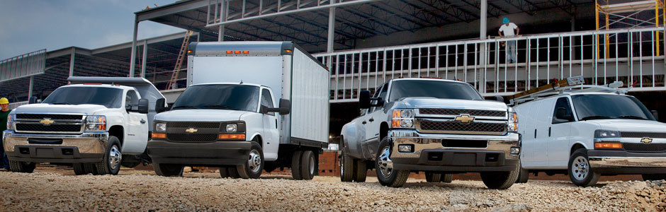 Commercial and Business fleet vehicles variety