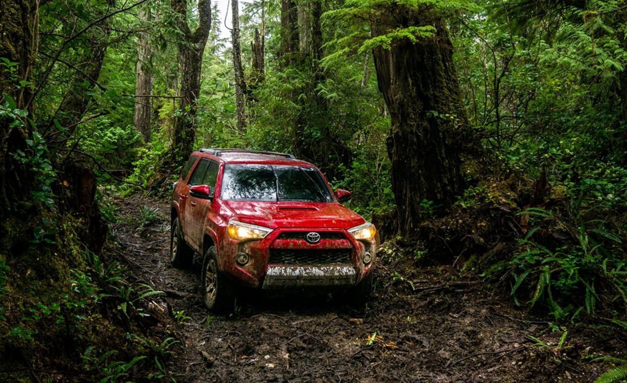 2015 Toyota 4Runner for Sale near Tacoma at Doxon Toyota