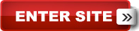 Grossinger Hyundai in Palatine