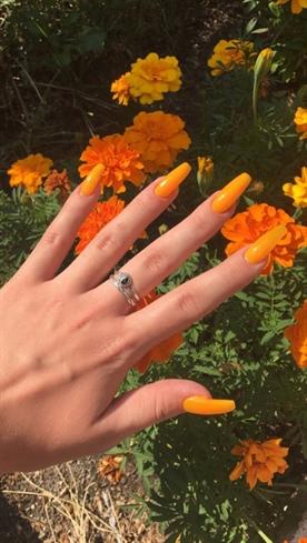 Nails bbs