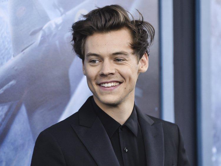 Harrys styles
