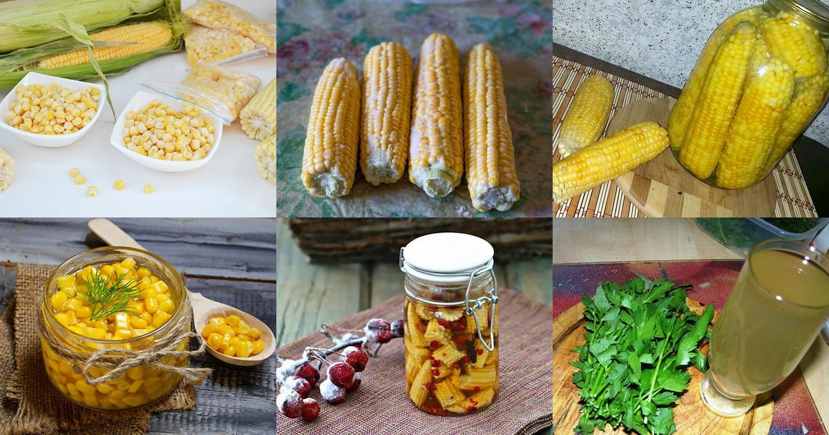Консервация кукурузы