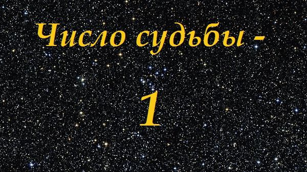 Число по дате рождения рассчитать