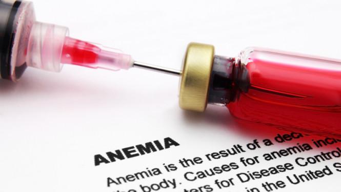 obat penambah darah