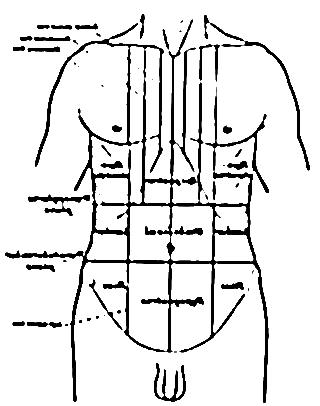 Douleur abdominale 19383