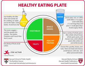 Food Pyramids and Plates: What Should You Really Eat?