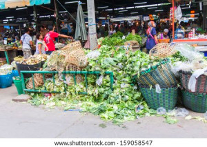 Food Waste Stock Photos, Images, & Pictures | Shutterstock
