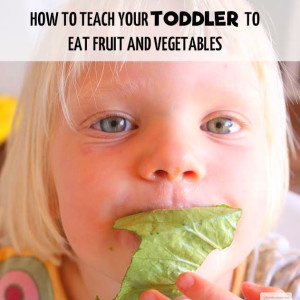How to Teach Your Toddlers To Eat Fruit and Vegetables ...