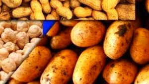 Food Rich In Lectins | Foodfash.co