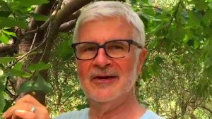 Dr. Steven Gundry Finds Incredible Superfood in Italy (See Descriptio ...