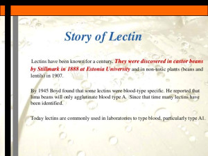 Lectins - The next medical tool?
