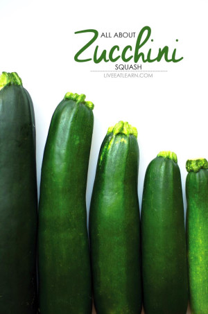 Everything You Need To Know About Zucchini Squash ...