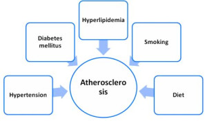 Atherosclerosis treatment - the chemical and natural ways