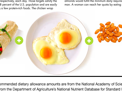 How Much Protein Should I Eat a Day? | Protein Sources ...