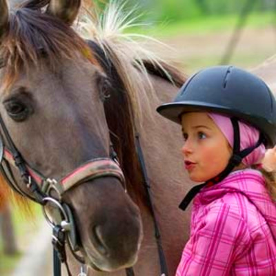Working with horses may ease stress in kids | Health24