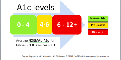 A1C Levels Test Results Chart - Diabetes Alert