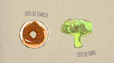 Watch: What Happens To Your Body When You Consume Too Much Carbohydrates - DesignTAXI.com