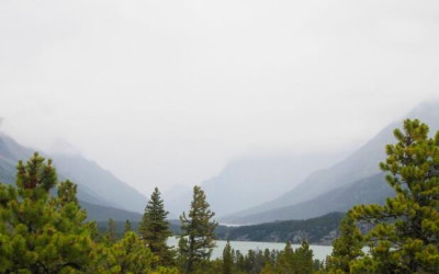 ... connection say wilderness camp operators - British Columbia - CBC News