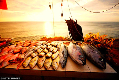 The sea is a larder of superfoods from seabass to sardines, explains ...