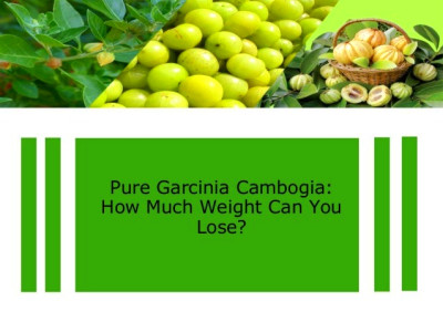 How Much Can I Expect To Lose With Garcinia Cambogia Extract | Apps ...