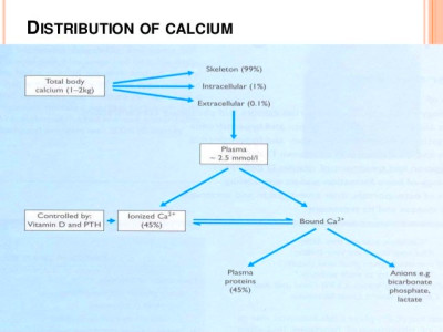Seminar on calcium