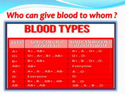 Blood Types and Personality