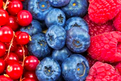 Fruits High In Polyphenols Related Keywords & Suggestions - Fruits ...