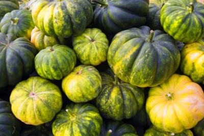 Nutrition in Calabaza Squash | LIVESTRONG.COM