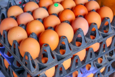 Glycemic Index of Eggs   LIVESTRONG.COM