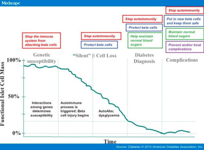 ... Diabetes Research Foundation at Forty: Updates of Research in Type 1