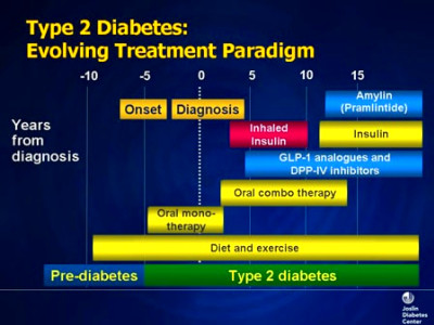 Design and Management of Insulin Therapy: Integrating the ...