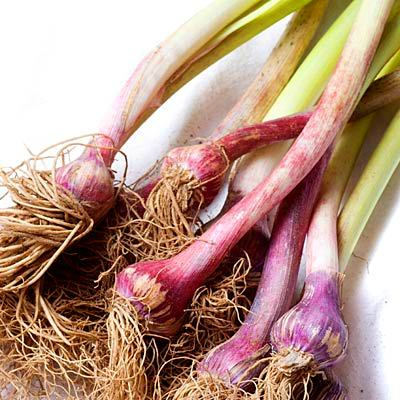 Spring garlic - Top 10 Superfoods for Spring - Health.com