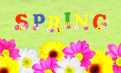 Spring is Here! | Little Promises Academy Blog