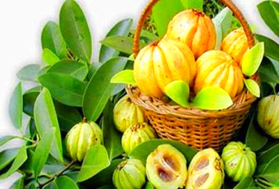 garcinia cambogia extract mayo clinic | The Great Canadian