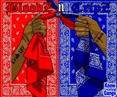 BLOODS AND CRIPS: LA GANGS (FULL DOCUMENTARY)