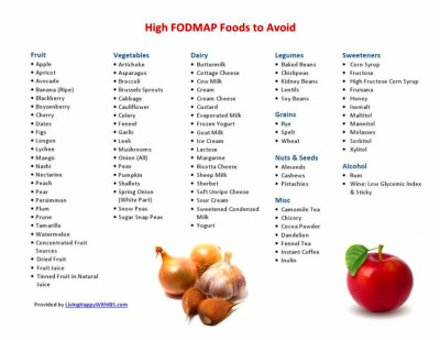 High FODMAP Food List | gluten / dairy free/ fodmap ...