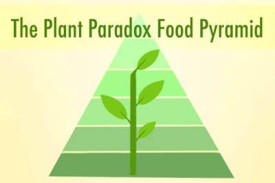 """Dr. Gundry's New Food Pyramid for Vitality (""""The Plant Paradox"""" diet)"""