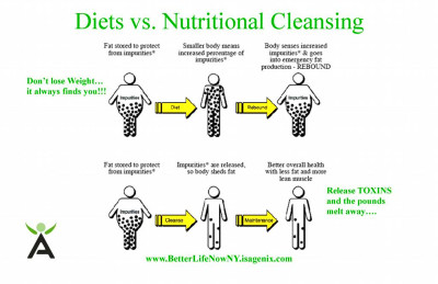 Diet vs Cleansing flyer by Better Life Now with Isagenix International