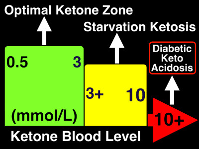Fasting, Ketosis and Fat Loss | Metabolic Performance