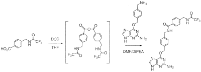 Patent WO2010034931A1 - Novel substrates of o6-alkylguanine-dna ...