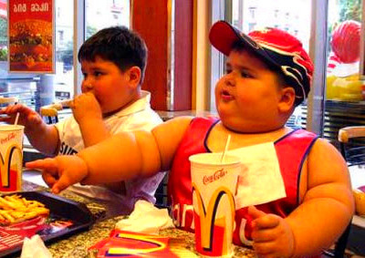 Is ADHD Caused by Insufficient Dietary Fat?