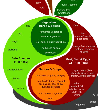 The design of a PHD meal is found in the body of the apple. Assuming ...