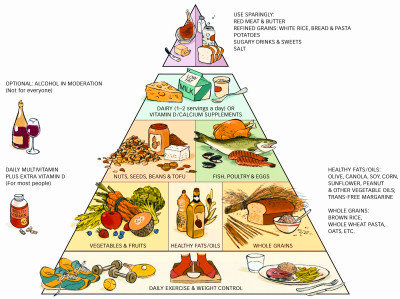 Healthy Eating Pyramid - Click to see a big copy.
