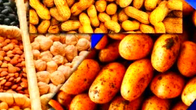 what foods do not contain lectin   Diabetes Advice Guide
