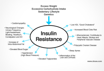 How to Reverse Type 2 & 1 Diabetes and Insulin Resistance