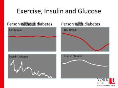 Lessons from a researcher and Person with Diabetes (PWD) - ppt video online download