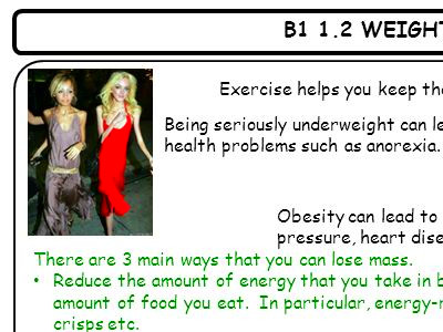 B1 1.1 DIET AND EXERCISE A balanced diet contains the correct amounts of: Carbohydrates Proteins ...